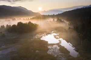 Fog at sunrise over the swamp of Pian di Gembro Nature Reserve, Aprica, Italy by Roberto Moiola