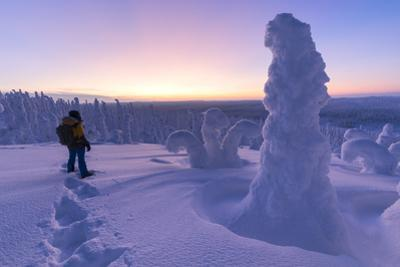 Hiker in the frozen forest, Riisitunturi National Park, Posio, Lapland, Finland by Roberto Moiola
