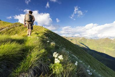 Hiker on steep ridge on the ascent towards Monte Azzarini, San Marco Pass, Albaredo Valley by Roberto Moiola