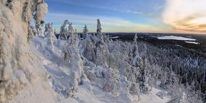 Panorama of snowy landscape and woods framed by blue sky and sun, Ruka, Kuusamo, Ostrobothnia regio by Roberto Moiola