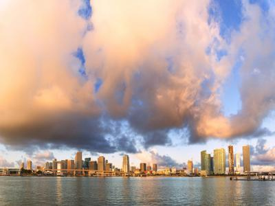 Panoramic of Miami skyline seen from Watson Island, Miami, Florida, USA by Roberto Moiola