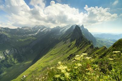 Peak Santis seen from Schafler during summer, Appenzell Innerrhoden, Switzerland by Roberto Moiola