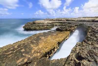 Rough sea and cliffs, Devil's Bridge, Antigua, Antigua and Barbuda, Leeward Islands by Roberto Moiola