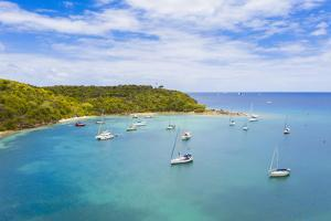 Sailboats and catamarans moored in a tropical bay by drone, Caribbean Sea, Antilles by Roberto Moiola
