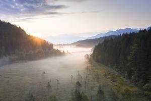 Sun rays at sunrise on fog covering the wetland of Pian di Gembro Reserve, Italy by Roberto Moiola