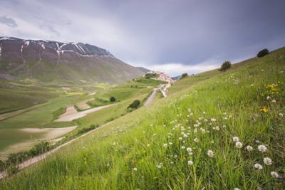 The green hills in bloom frame the medieval village, Castelluccio di Norcia, Umbria, Italy by Roberto Moiola