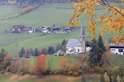 The yellow leaves of a larch frame the alpine church in the fall, St. Magdalena, Funes Valley, Sout by Roberto Moiola