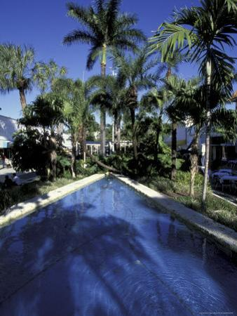 Lincoln Road, South Beach, Miami, Florida, USA by Robin Hill