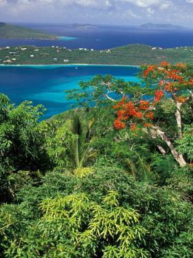 Magens Bay, St. Thomas, Caribbean by Robin Hill