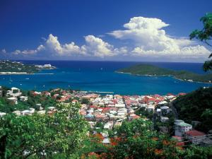 View from Paradise Point, Charlotte Amalie, St. Thomas, Caribbean by Robin Hill