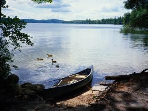Scene with Ducks and Canoe on Lake Kezar by Robin Siegel