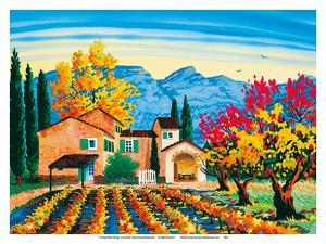 Chateau - Provence, France - French Villa, Vineyards by Robin Wethe Altman