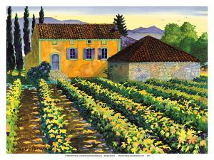 Maison Merlot - Tuscany Italy - Italian Farm, Vineyards by Robin Wethe Altman