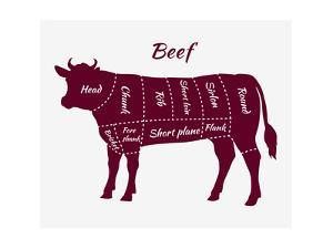 Scheme of Beef Cuts for Steak and Roast by robuart