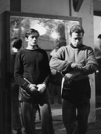 https://imgc.allpostersimages.com/img/posters/rocco-and-his-brothers-rocco-and-ses-freres-by-luchino-visconti-with-alain-delon-and-renato-sal_u-L-Q1C19XF0.jpg?artPerspective=n