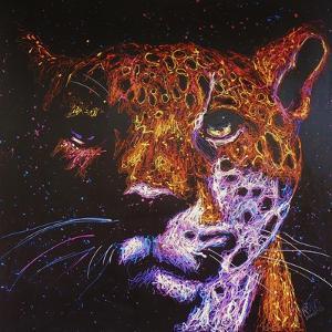 Jaguar by Rock Demarco