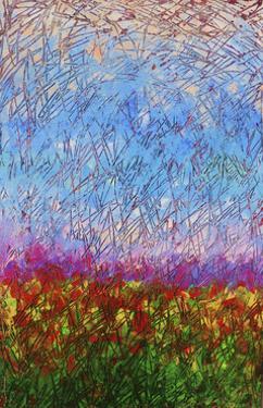 Meadow by Rock Demarco