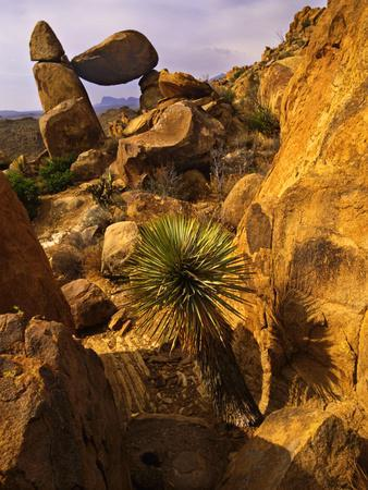 https://imgc.allpostersimages.com/img/posters/rock-formations-in-grapevine-hills-big-bend-national-park-texas-usa_u-L-PXR6ZB0.jpg?p=0