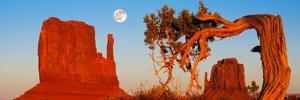 Rock Formations, Monument Valley Tribal Park, Utah Navajo, San Juan County, Utah, USA