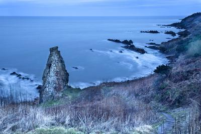 https://imgc.allpostersimages.com/img/posters/rock-stack-on-the-fife-coast-near-st-andrews-fife-scotland-united-kingdom-europe_u-L-PQ8N6B0.jpg?p=0