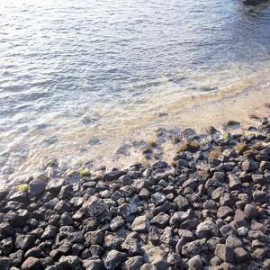 Rocks on Beach by the Sea