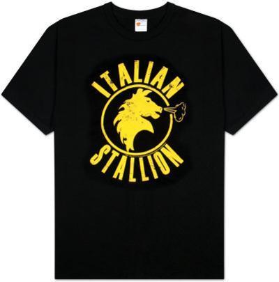Rocky - Black Stallion