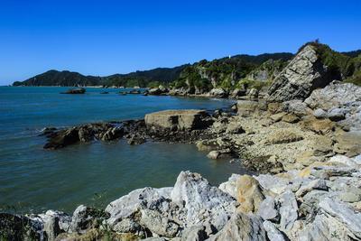 https://imgc.allpostersimages.com/img/posters/rocky-coastline-of-the-abel-tasman-national-park-south-island-new-zealand-pacific_u-L-PQ8SJZ0.jpg?p=0
