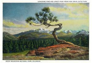 Rocky Mt. Nat'l Park, Colorado - High Drive Lonesome Pine View of Long's Peak
