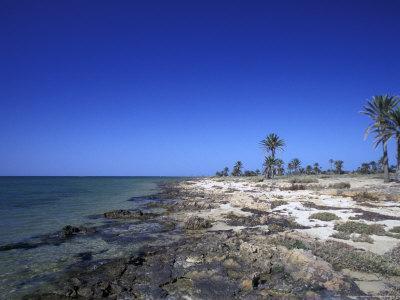https://imgc.allpostersimages.com/img/posters/rocky-shore-of-kerkennah-islands-tunisia_u-L-P58AP00.jpg?p=0