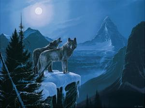 Twilight Wolves by Rod Tribiger
