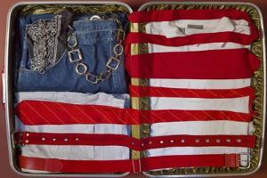 American Suitcase by Roderick E. Stevens