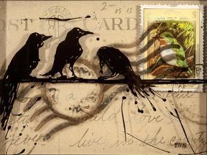 Curious Birds by Roderick E. Stevens