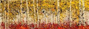 Fall Panoraspen by Roderick E. Stevens