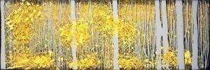 Panor Aspens Grey Forest by Roderick E. Stevens