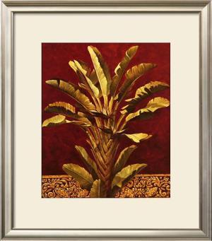 Traveler's Palm by Rodolfo Jimenez