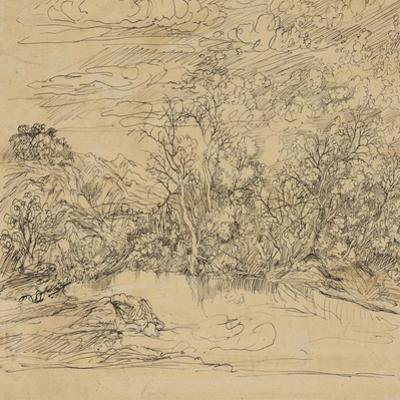 Bank of a Pond by Rodolphe Bresdin