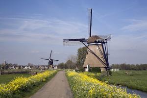 Dutch Windmills along a Flower-Lined Road by Roel Meijer