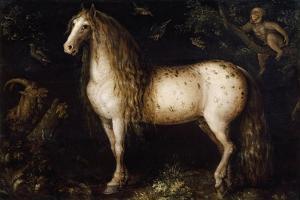 The Dapple Grey, C. 1625-1630 by Roelant Savery