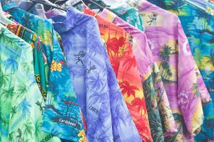 A Rack of Brightly Colored Beach Shirts at an Open Air Market on Cane Garden Bay, Tortola Island by Roff Smith