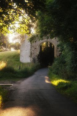 Ruins of the 13th Century 'New Gate' Leading to the Ancient Village of Winchelsea by Roff Smith