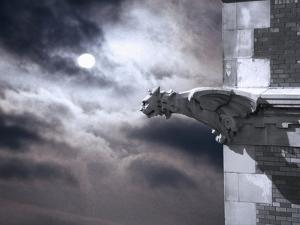 Gargoyle on Building at Night by Roger Brooks