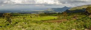 Bale Mountains National Park. Ethiopia. by Roger De La Harpe
