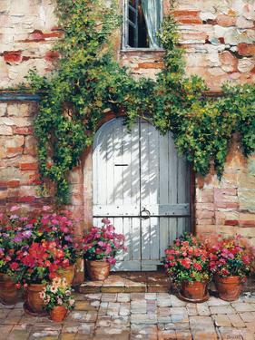 Wooden Doorway, Siena by Roger Duvall