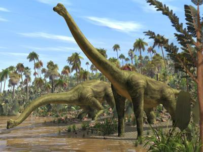 Brachiosaurus Dinosaurs by Roger Harris