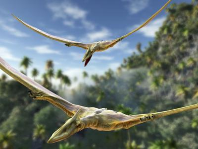 Pterosaurs Flying, Computer Artwork by Roger Harris