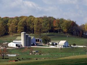 Farm, Pa Dutch Country, Lancaster, PA by Roger Holden