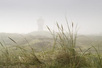 Dunes, Grass, the North Sea, Island Langeoog, Fog