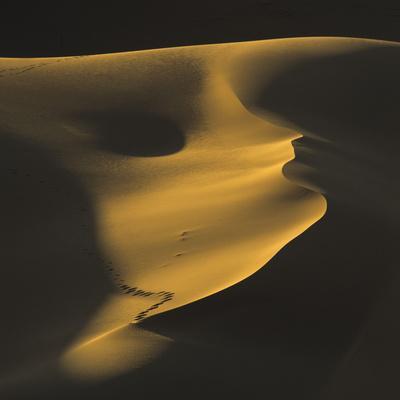 Morocco, Sahara, Close to MŽrzouga