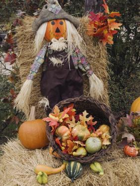 Halloween Decoration, Hill Country, Texas, USA by Rolf Nussbaumer