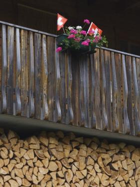 Swiss Flag and Flower Pot, Binn, Wallis, Switzerland by Rolf Nussbaumer